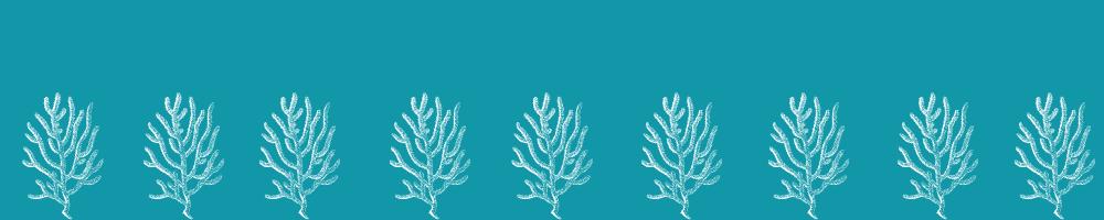 Pinata Meerjungfrau